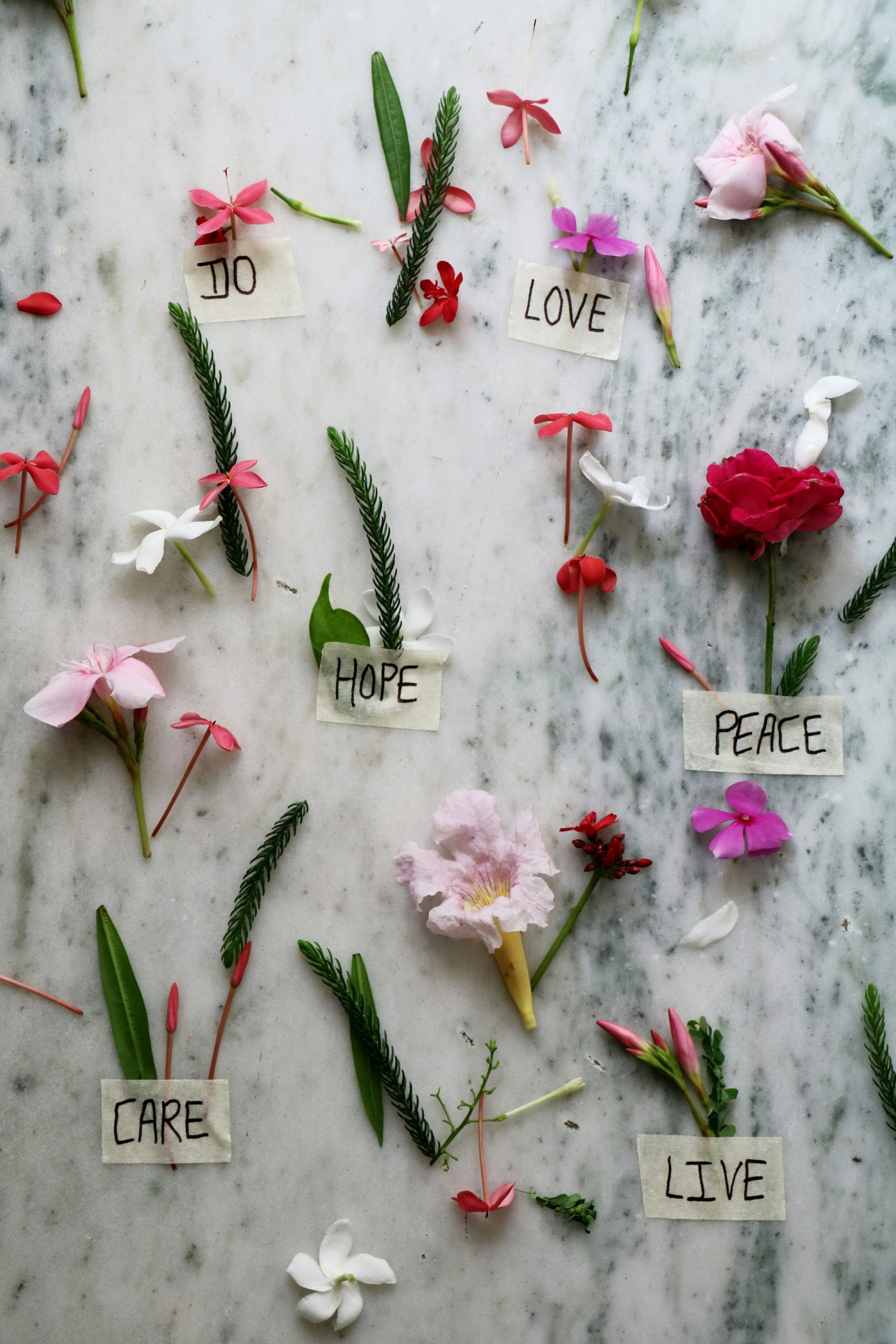 flowers with love hope and peace signs
